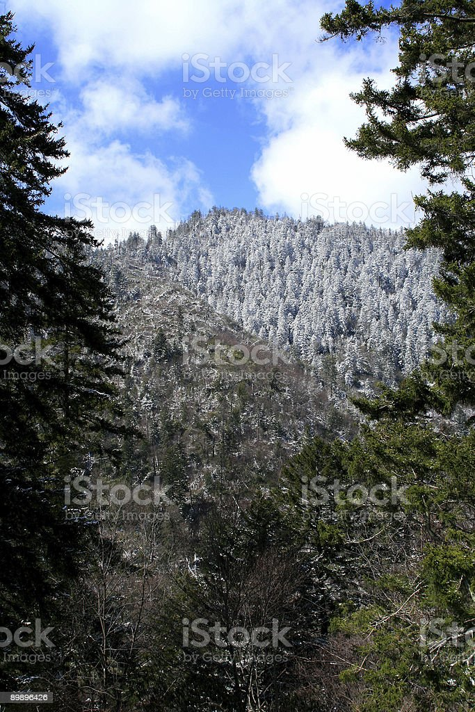 Newfound Gap royalty-free stock photo