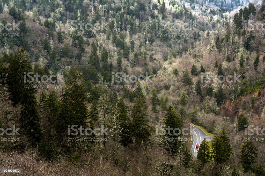 Newfound Gap Road stock photo