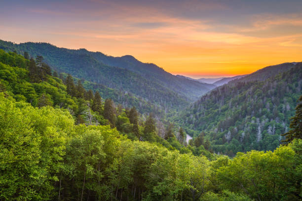 Newfound Gap Smoky Mountains Great Smoky Mountains National Park, Tennessee, USA sunset landscape over Newfound Gap. blue ridge mountains stock pictures, royalty-free photos & images