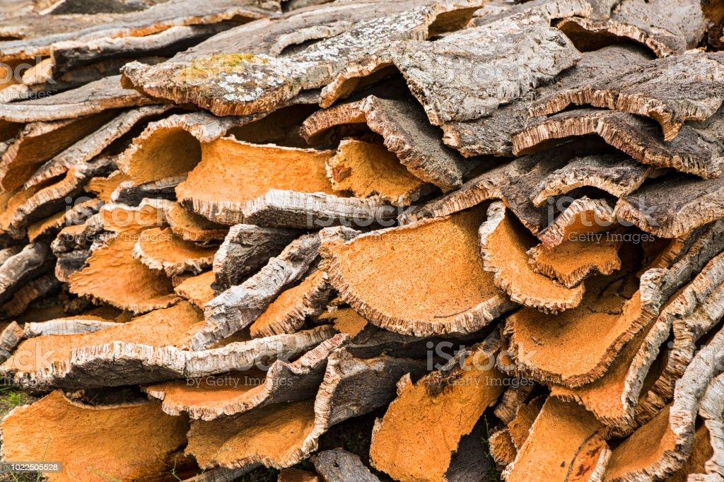Écorce de chêne-liège nouvellement coupées, Sardaigne, Italie - Photo