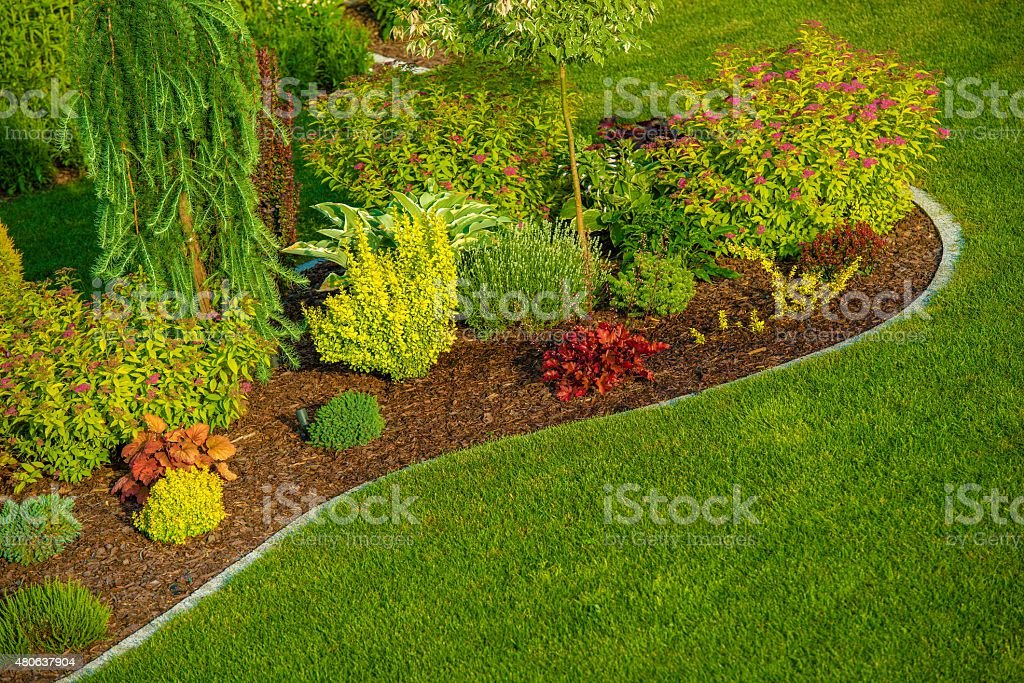 Newly Designed Garden stock photo