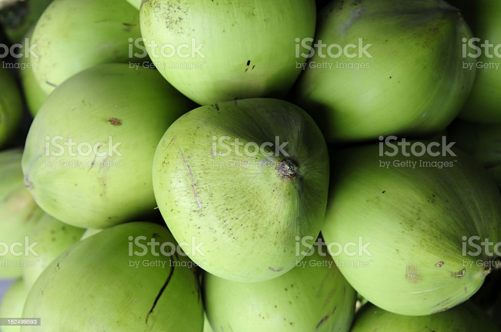 Newly Harvested Green Coconuts royalty-free stock photo