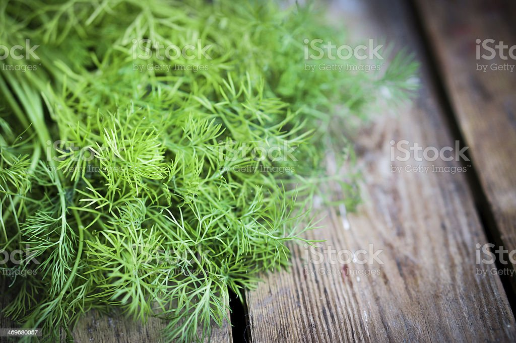 Newly pulled dill on old wooden table stock photo