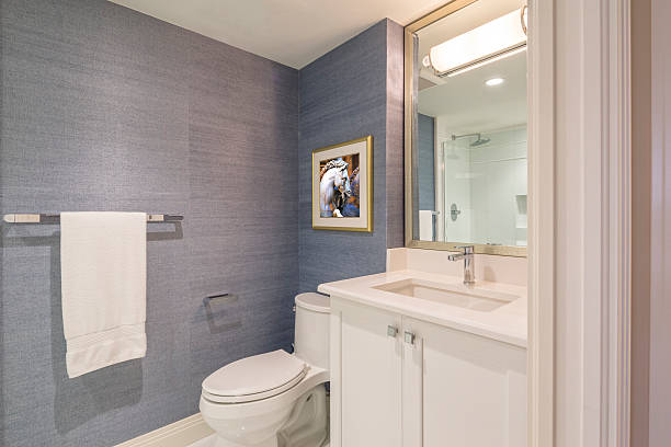 Newly Remodeled Guest Bathroom stock photo