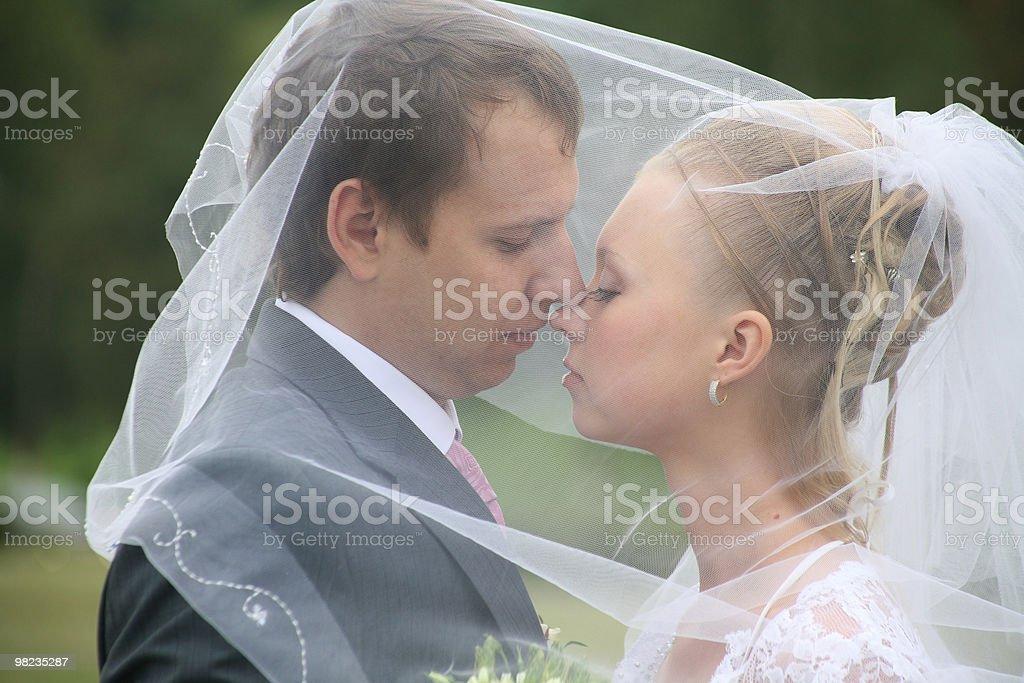 Sposi sotto un velo foto stock royalty-free