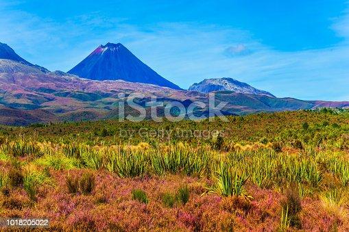 istock Ngauruhoe - the active volcano 1018205022