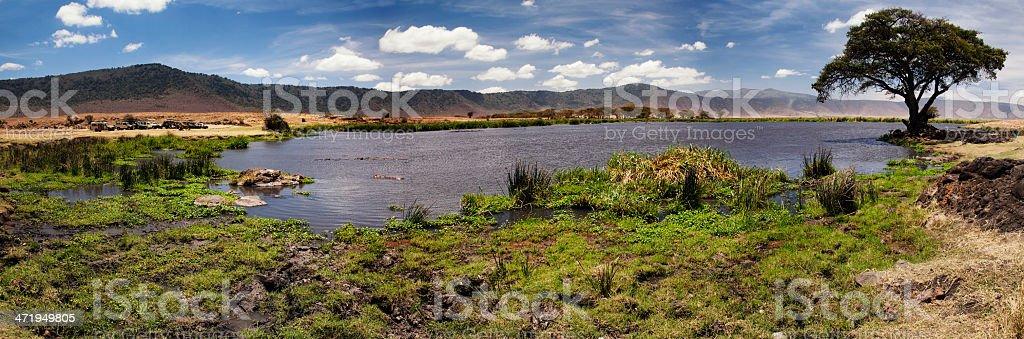 Ngorogoro Crater and Hippos stock photo