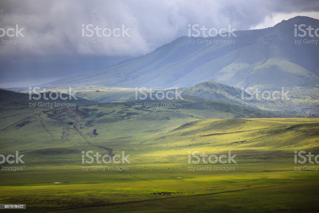 Ngorongoro Conservation Area stock photo