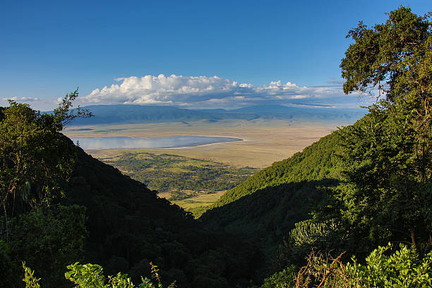 Ngorongoro Crater Tanzania overview Ngorongoro Crater Tanzania overview from the crater rim ngorongoro conservation area stock pictures, royalty-free photos & images