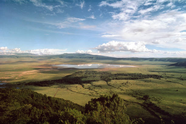 Ngorongoro Crater, Tanzania Ngorongoro Crater, Ngorongoro Crater Conservation Area, Tanzania, photographed from Ngorongoro Wildlife Lodge on the crater rim in 1975 shortly after the government lodge opened. Yellow fever trees of the Lerai Forest in front of Lake Magadi. Scanned film with grain. ngorongoro conservation area stock pictures, royalty-free photos & images