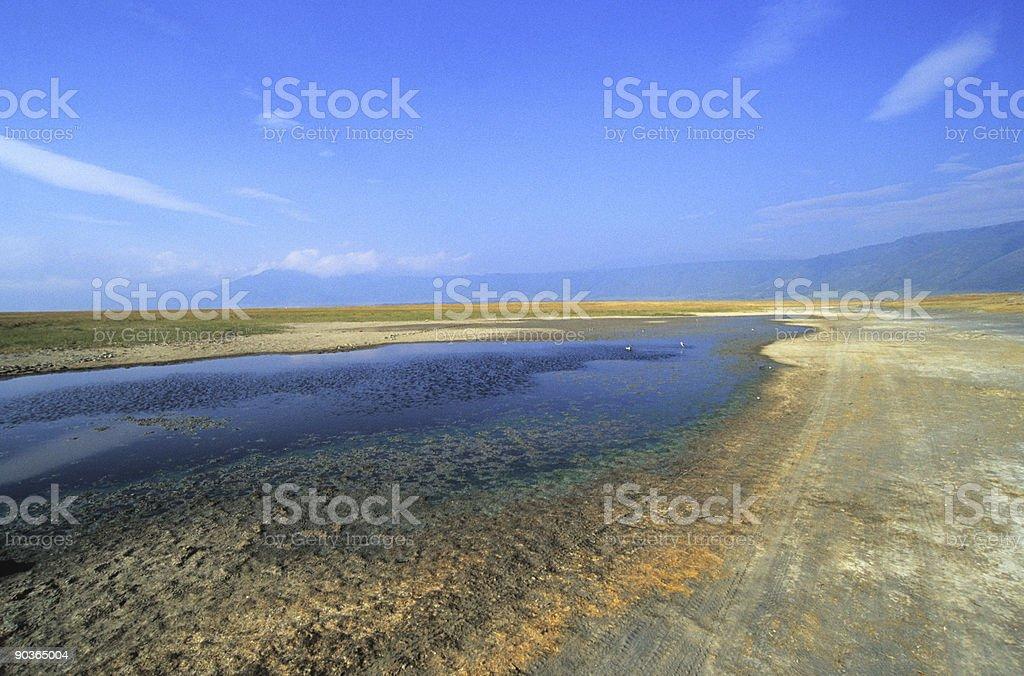 Ngorongoro royalty-free stock photo