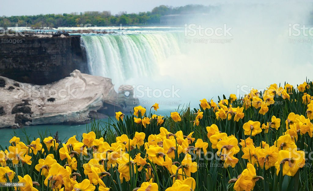 Niagara Falls Spring Flowers and Melting Ice stock photo