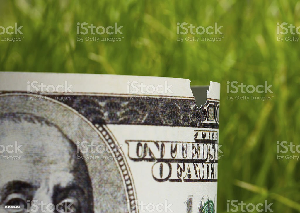 nibbled banknote - economic recession concept stock photo