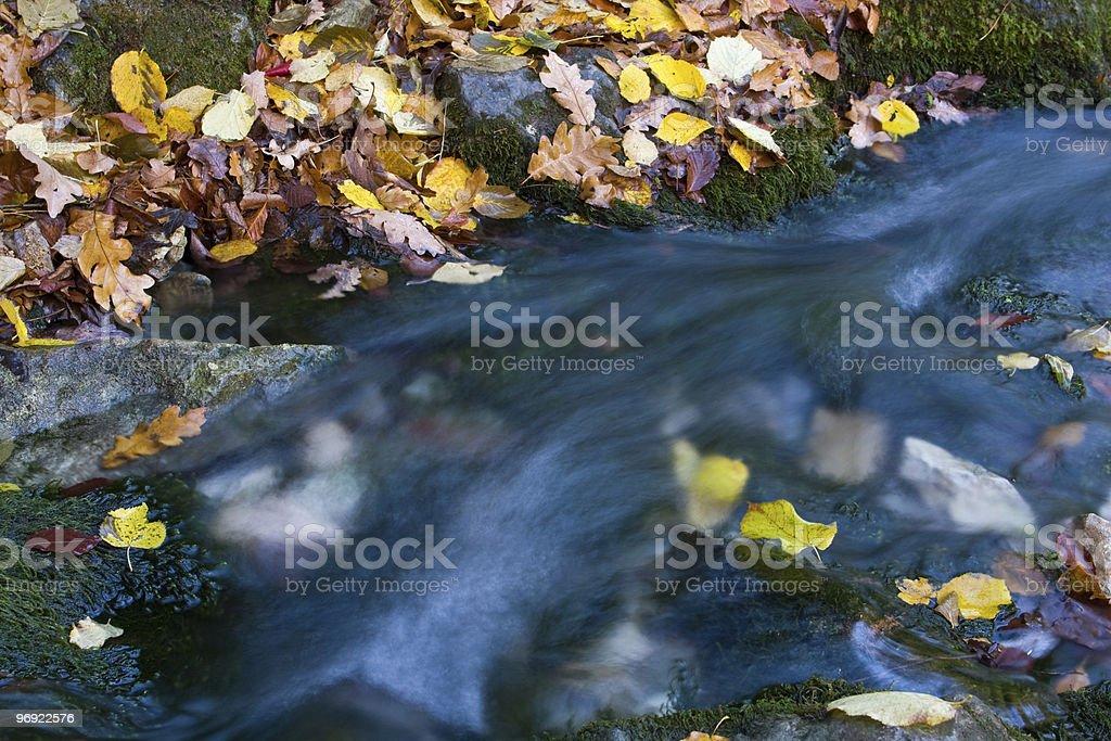 Nice autumn stream royalty-free stock photo