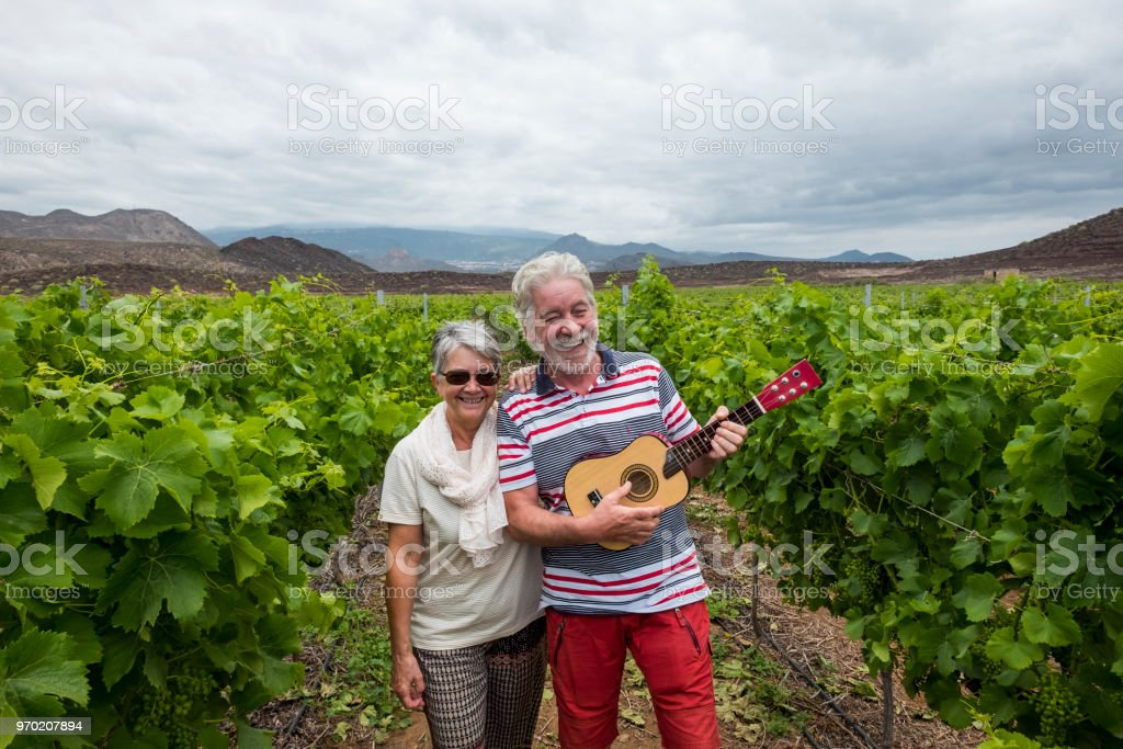 nice beautiful adult couple white hair walk on the fields of wine playing an ukulele guitar. happiness together forever with nice and craziness concept. lifestyle different for retired stock photo