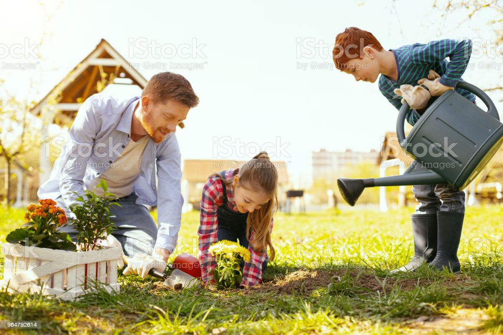 Nice cute boy helping his family royalty-free stock photo