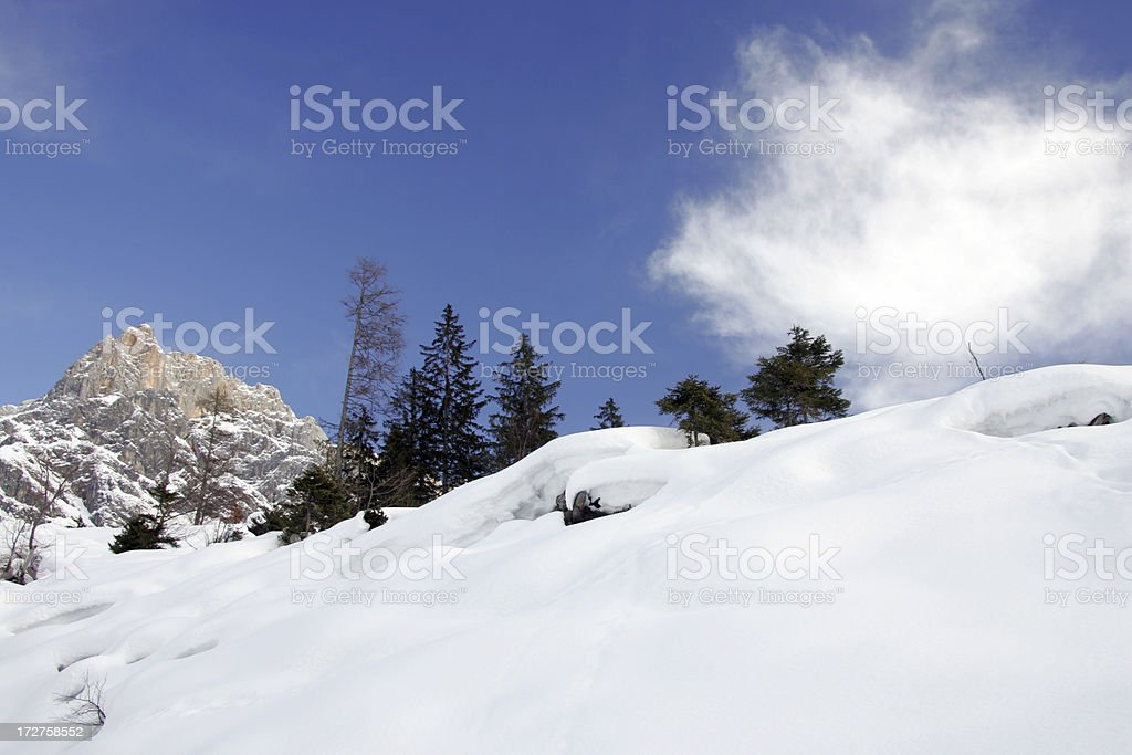 nice day in snow royalty-free stock photo