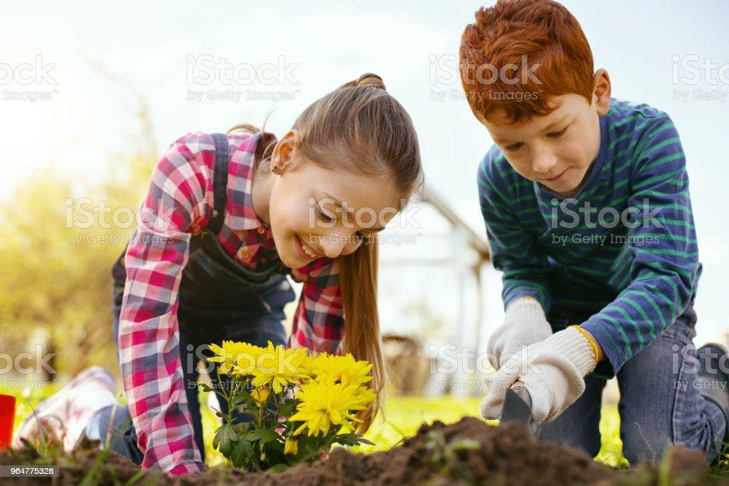 Nice delighted children volunteering royalty-free stock photo