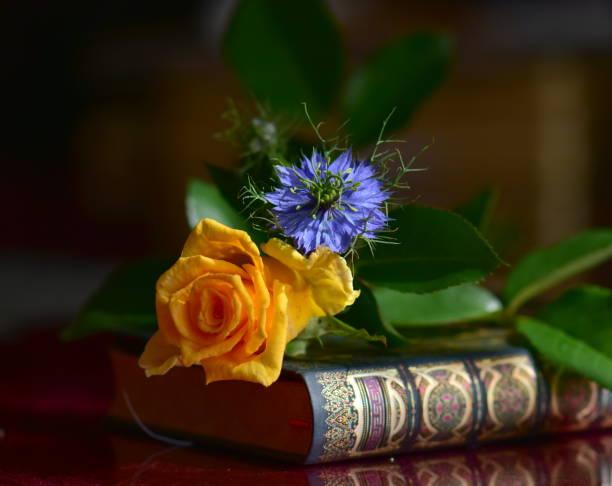 Schöne Blumen und Buch – Foto