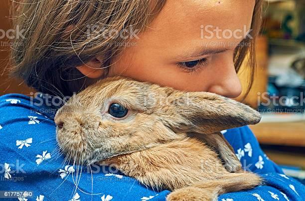 Nice girl embracing a funny rabbit picture id617757440?b=1&k=6&m=617757440&s=612x612&h=ysnllddawotrcyh2koadyn2amqbtjm57ajz v77m us=