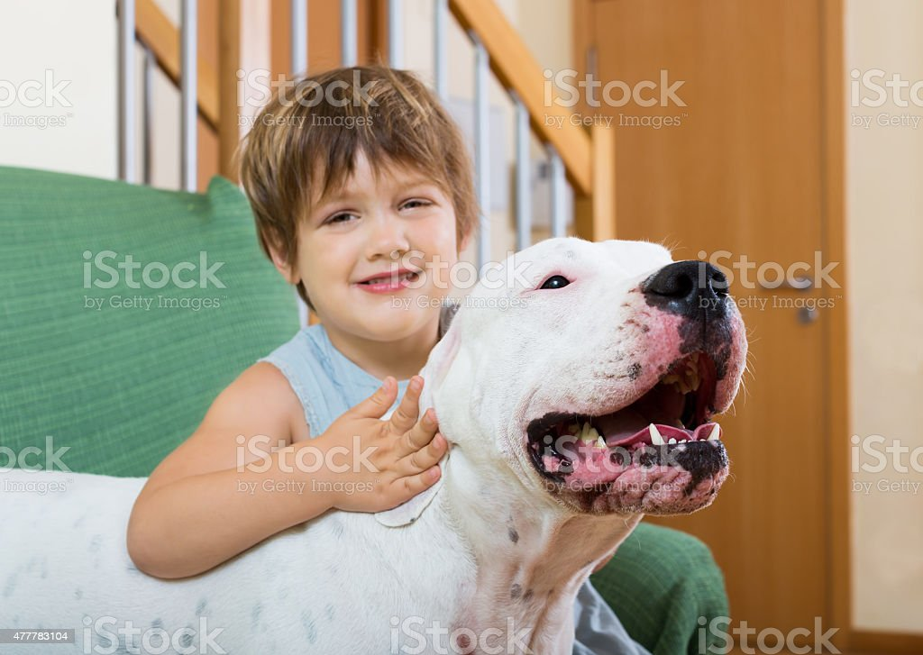 nice girl on couch with dog stock photo
