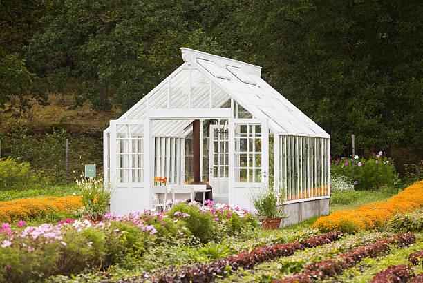 Nice greenhouse stock photo