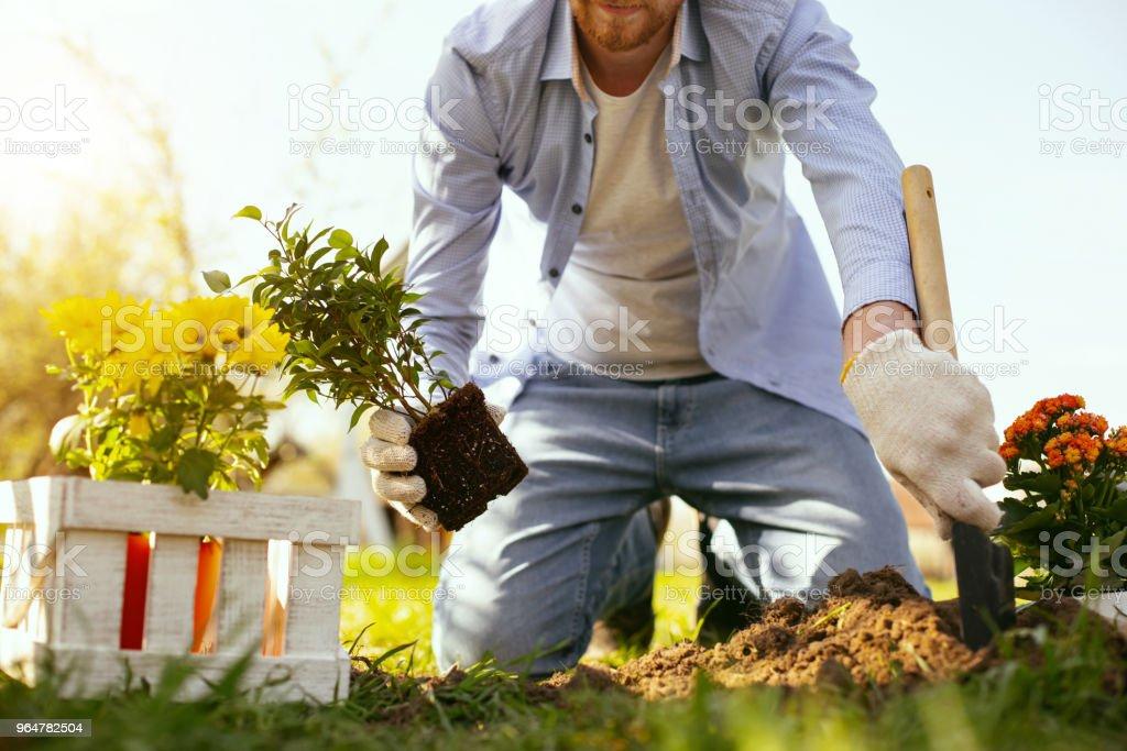 Nice handsome man enjoying gardening royalty-free stock photo