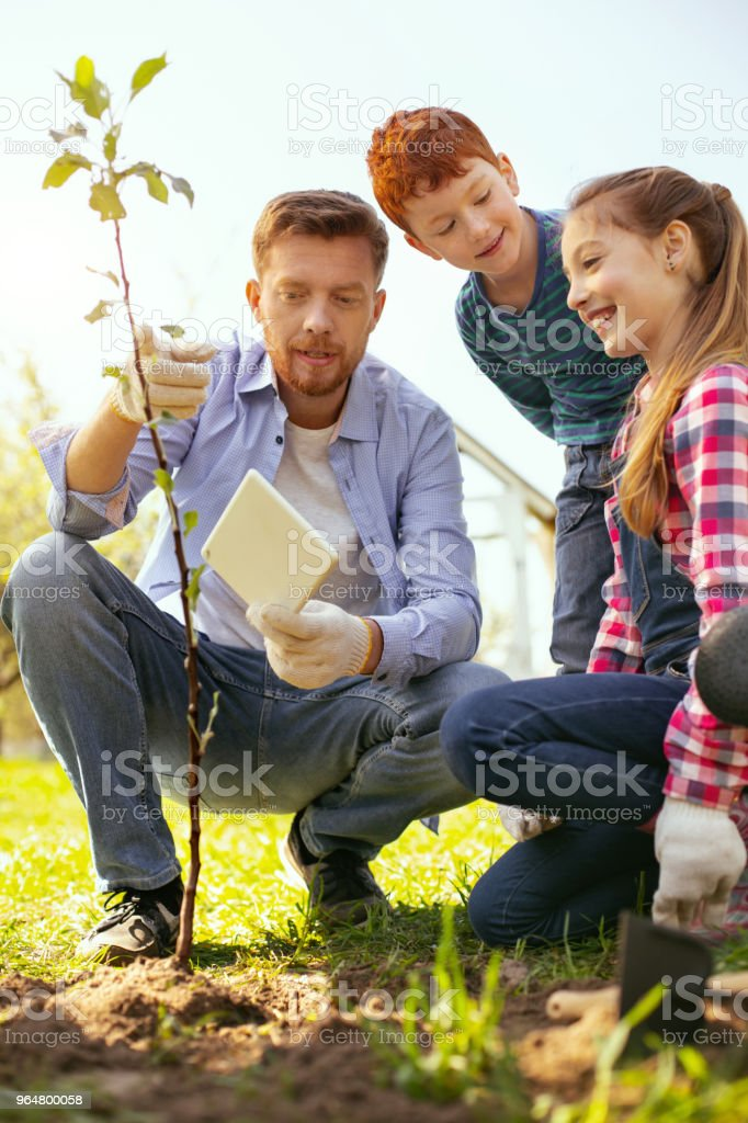 Nice handsome man pointing at the tree royalty-free stock photo