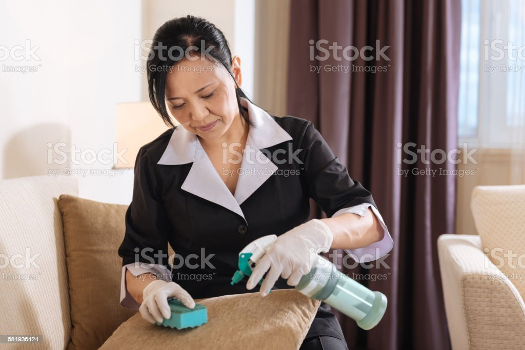 Nice hard working woman spraying cleansing agent on the cushion stock photo