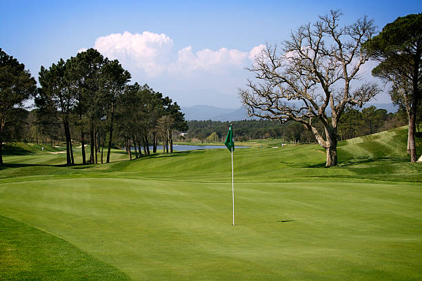 Nice hole of a golf course stock photo