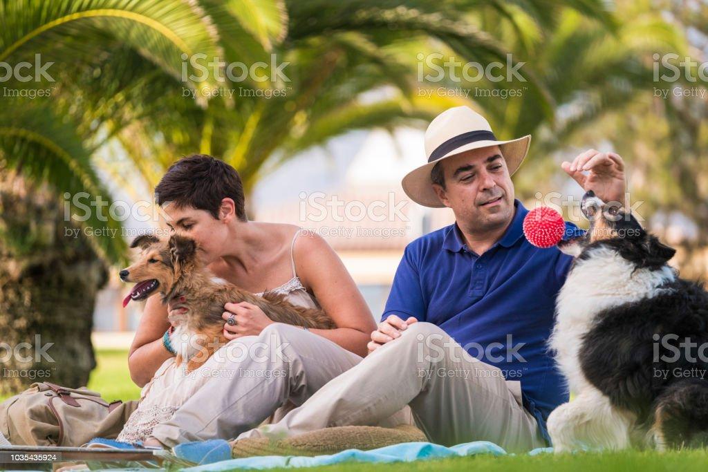 edad media agradable pareja caucásica sentado en el césped con palmeras en el fondo jugando con dos perros divertidos y hermosos y una bola roja. disfrutar y divertirse con el concepto de animales - foto de stock