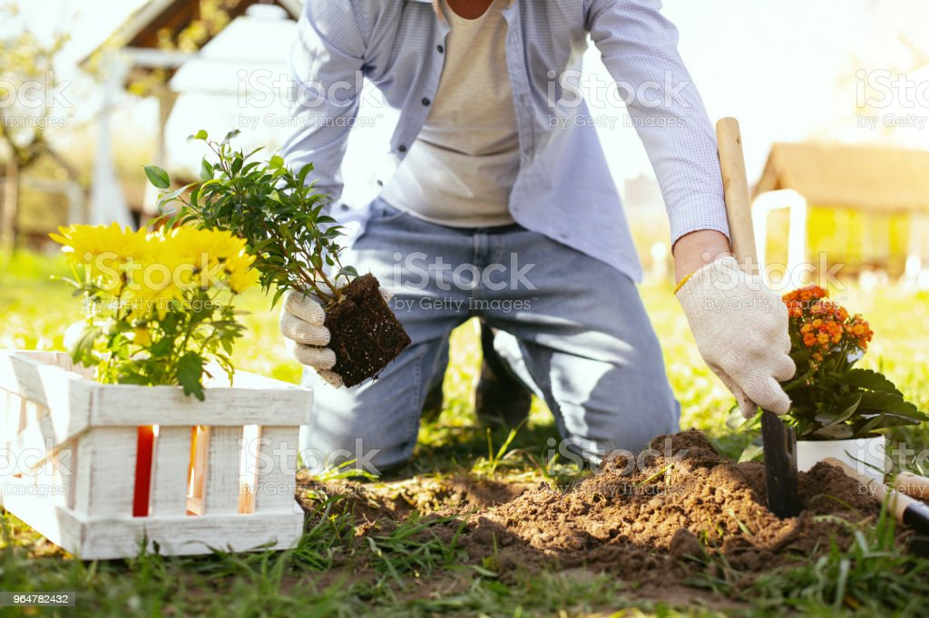 Nice pleasant man digging a hole royalty-free stock photo