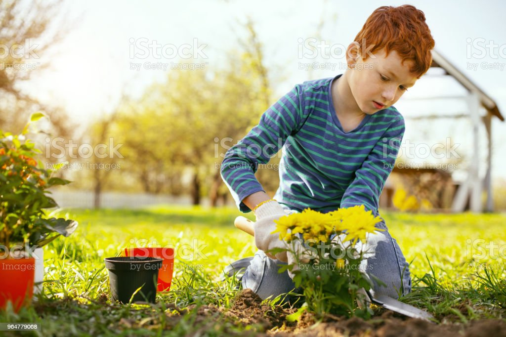 Nice red haired boy sitting on the ground royalty-free stock photo