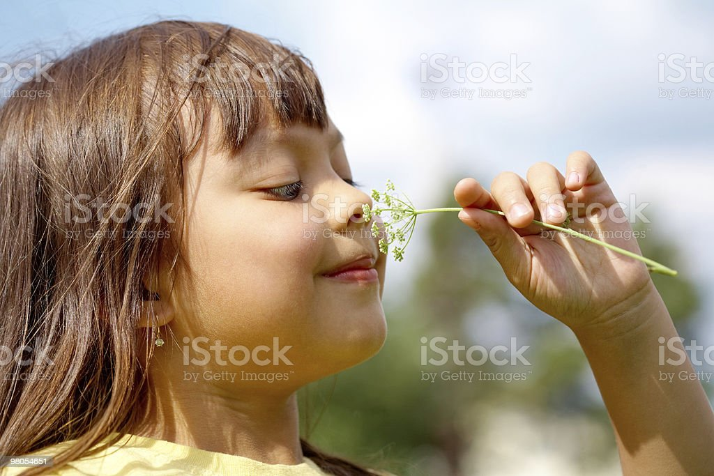 Nice smell royalty-free stock photo