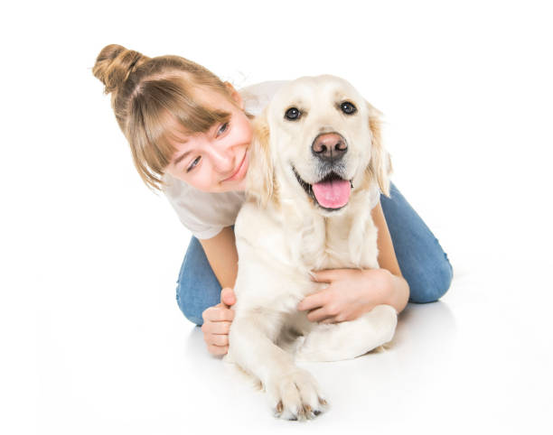 Nice teen woman and her beautiful Golden Retriever dog over white background stock photo