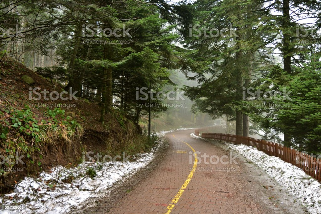 Nice view of Abant National Park, in Bolu, Turkey stock photo