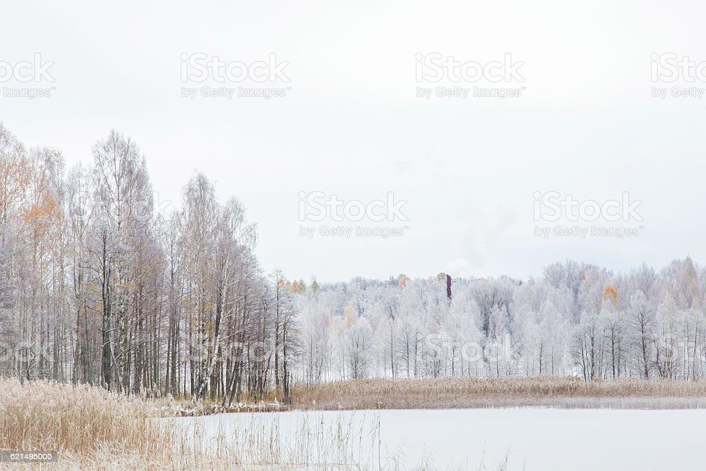 Nice winter day at lake after blizzard. Trees covered snow. Lizenzfreies stock-foto