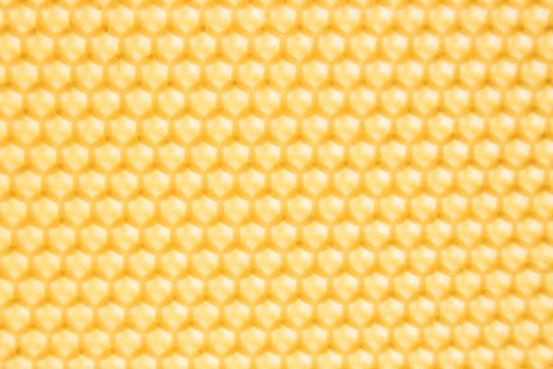呈黃色生毛六邊形, 背光。 - 蜂巢式樣 個照片及圖片檔