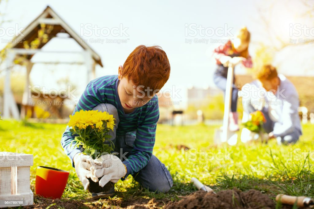 Nice young boy working outdoors royalty-free stock photo