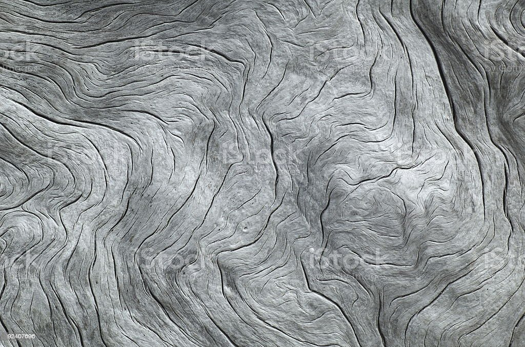 Nicely patterned driftwood royalty-free stock photo