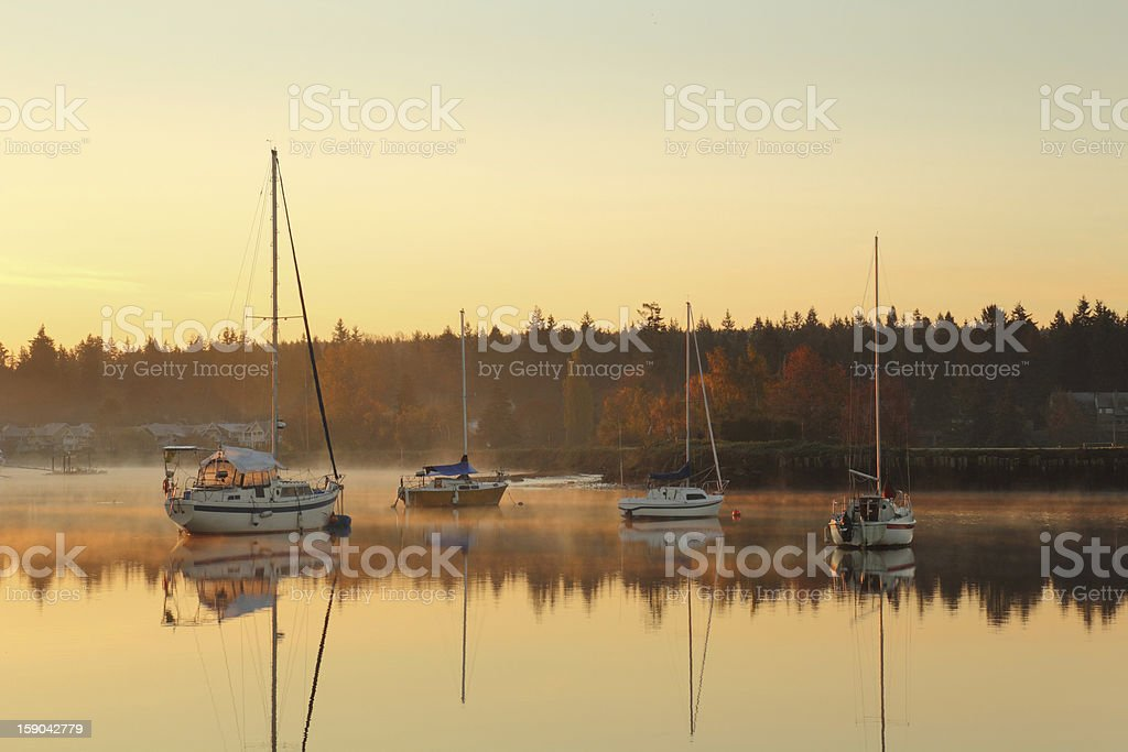 Nicomekl Anchorage, British Columbia royalty-free stock photo