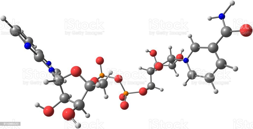 Nicotinamide adenine dinucleotide molecular structure isolated on white stock photo