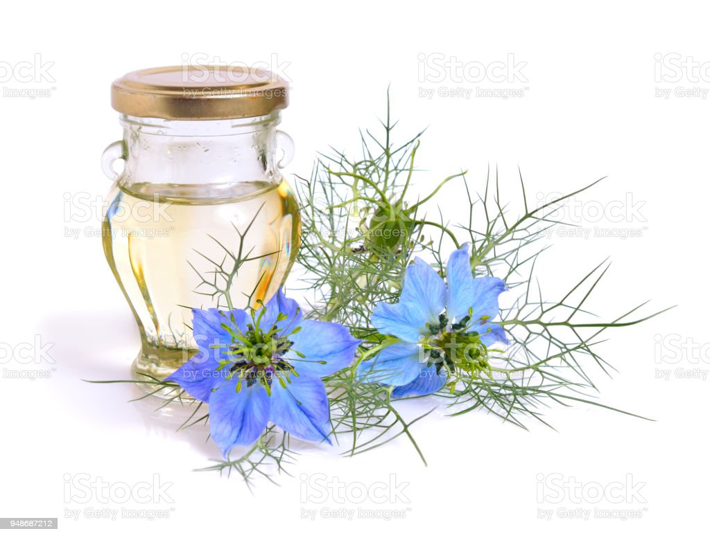 Nigella. Common names devil-in-a-bush or love-in-a-mist. With oil. Isolated stock photo