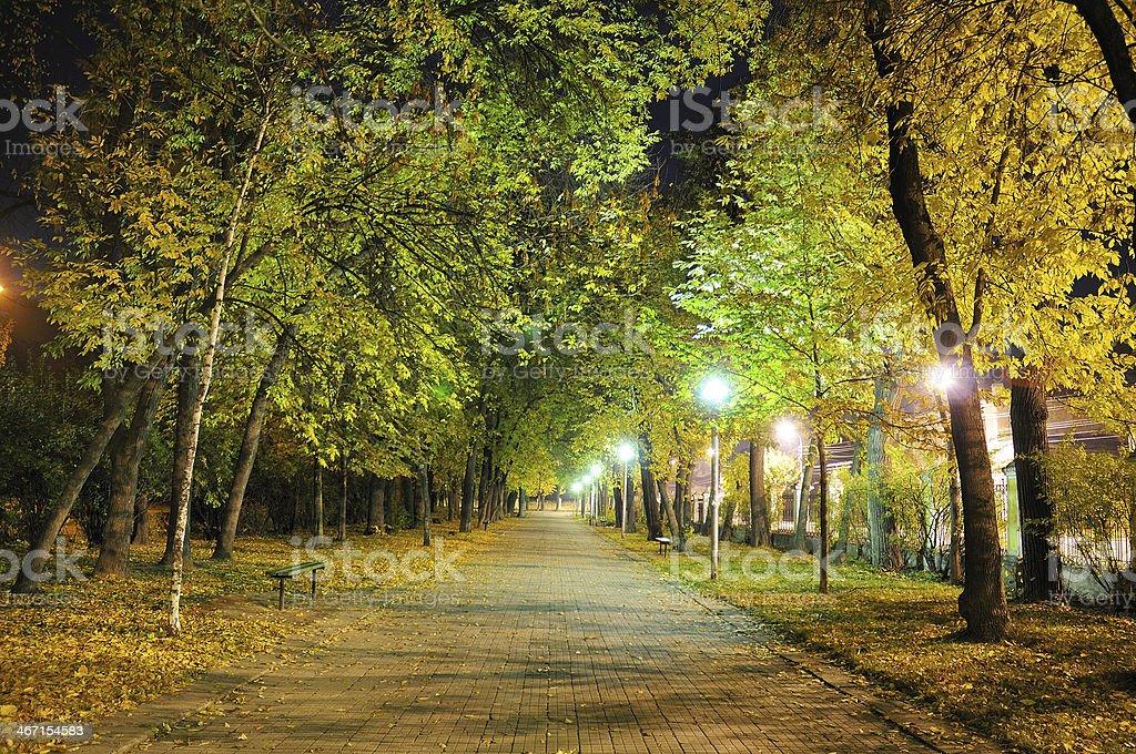 Ночь Аллея Парк стоковое фото