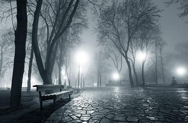 Nacht city park – Foto