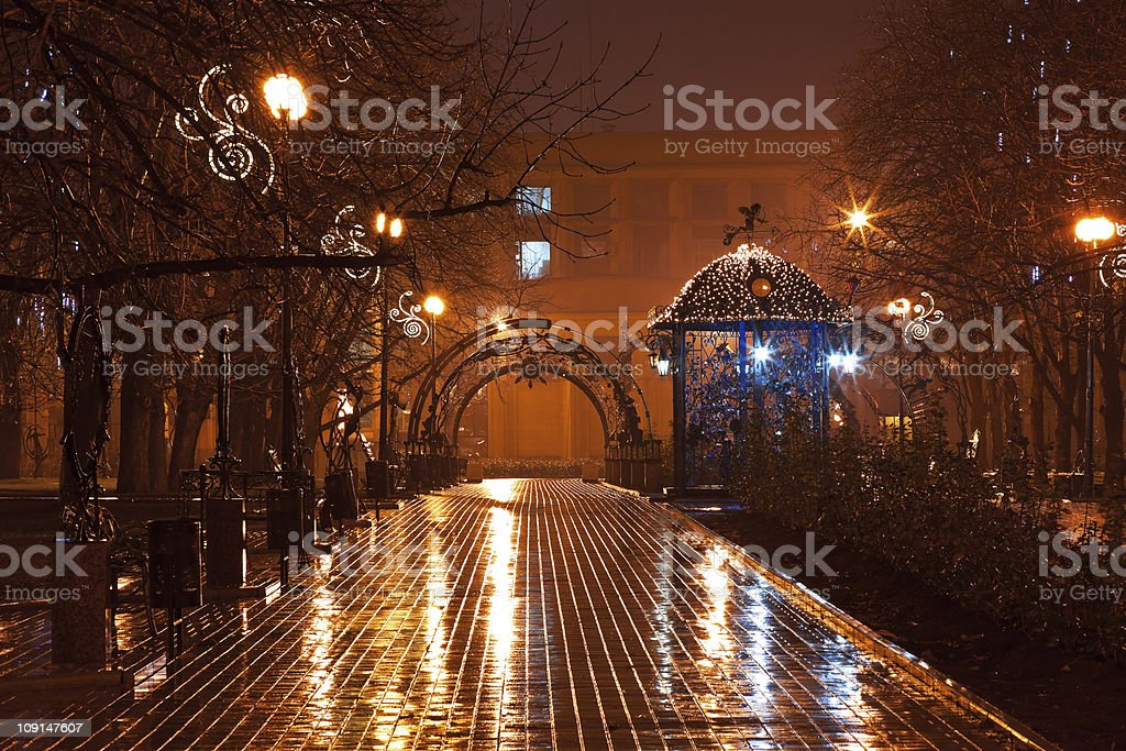 Night decorated alley in the city park stock photo