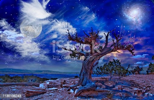 Night Desert Landscape