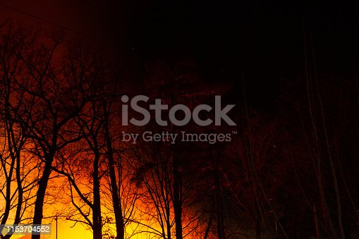 1195174769istockphoto Night fire in the autumn deciduous forest 1153704552