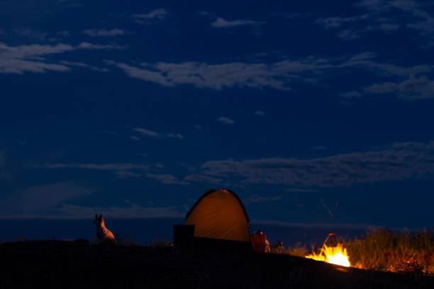 Night fire on the background of the moon in the camp and the dog picture id1249374858?b=1&k=6&m=1249374858&s=612x612&w=0&h=pxcvujenbkesobvmlgidyy1cjbml0x269fbv6xiekym=