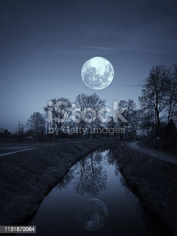 Night in a Park with Full Moon